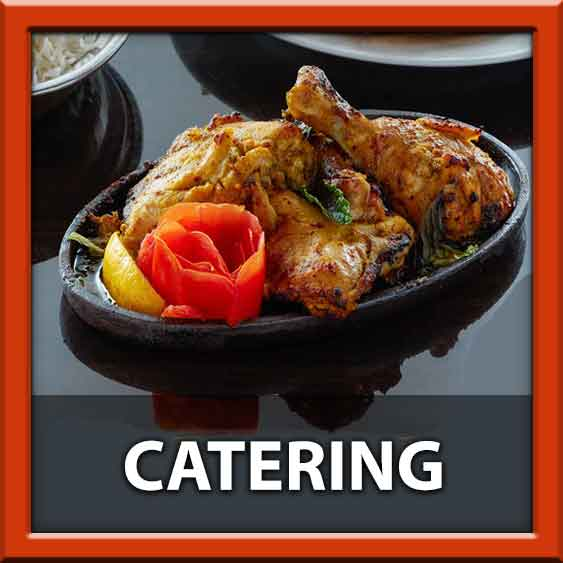 Tiffin Indian Cuisine King of Prussia KOP Indian Food Blog #5 Top 5 ways to eat Indian food from tiffin Delivery to 19406 19073 Upper Providence 19063